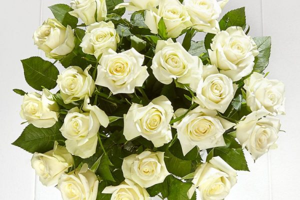 Marks-Spencer-Fairtrade-White-Roses-25-plus-free-delivery