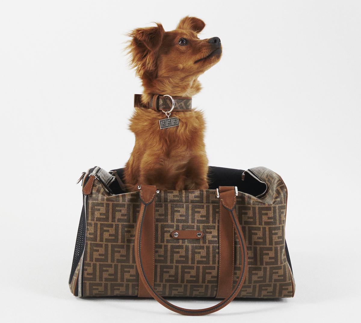 Fendi Unveil Monogram-Laden Pet Travel Collection
